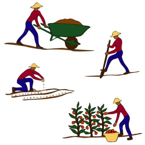 as you sow, so shall you reap - Wiktionary